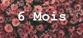 Abonnement 6 mois kitkipouss : Mom Mag